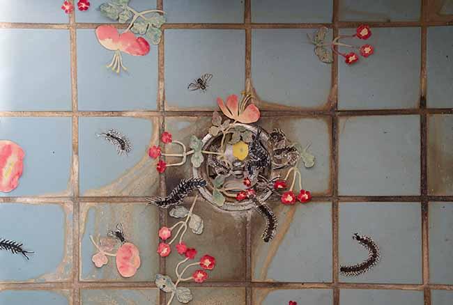 「水のない池」(部分)2018 紙に水彩、墨 photo:Mina Ino