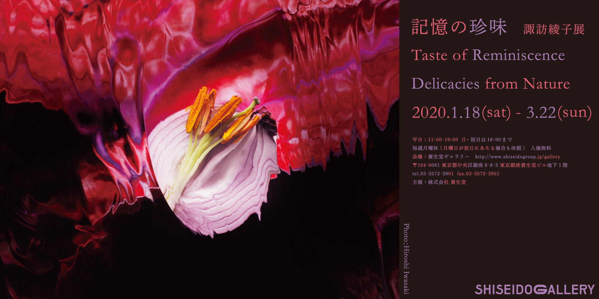 """Taste of Reminiscence, Delicacies from Nature: Ayako Suwa Exhibition""  will run from January 18 (Sat) — March 22 (Sun), 2020"