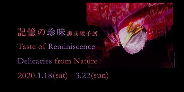 「記憶の珍味 諏訪綾子展」ショート動画を公開しました。