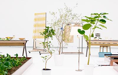 THE EUGENE Studio Agricultural Revolution 3.0