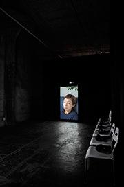 「Mirror Portraits」 2012
