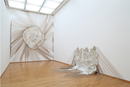 左:<神の宿る部分>2009 右:<浸透する ドリフトする>2009 東京都現代美術館蔵 photo by 木奥恵三